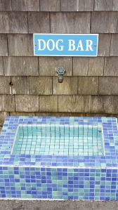 Chatham has a lot of interesting shops, including Ducks In A Window (guess what they have there), and pubs like the Chatham Squire, an establishment that also featured this clever Dog Bar outside.
